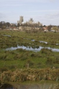 Views of the Cathedral across the flood meadow.